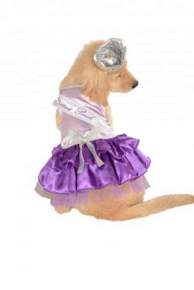 Prettiest Pooch Dog Costume