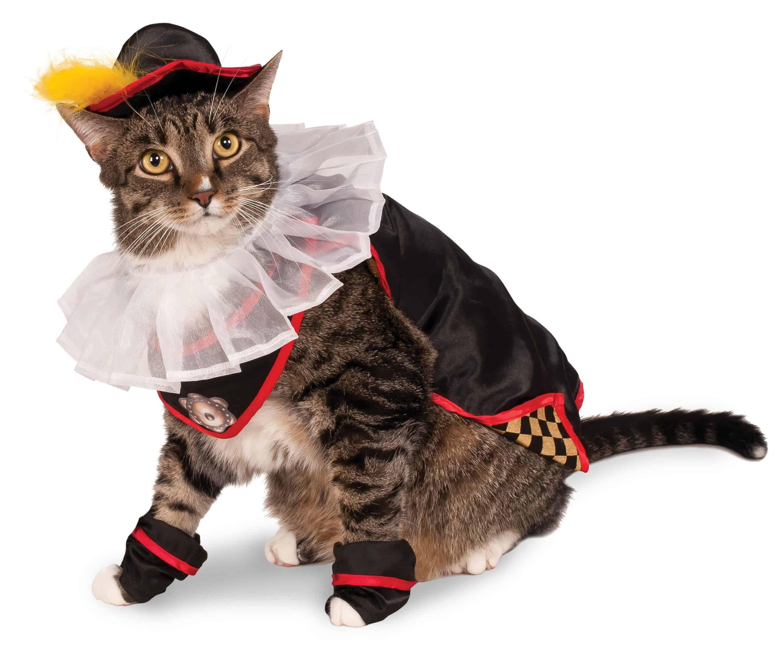 Puss In Boots Cat Costume