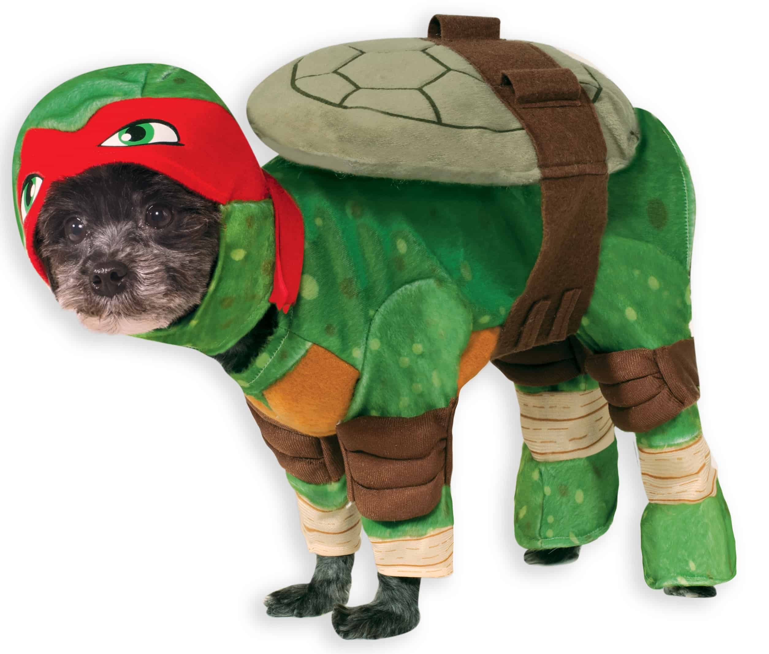 Raphael Teenage Mutant Ninja Turtle Dog Costume