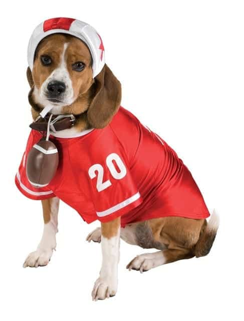 Red Football Player Dog Costume