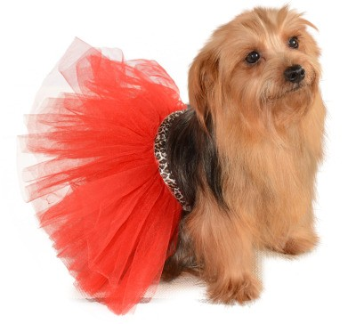 Red/Leopard Tutu Dog Costume