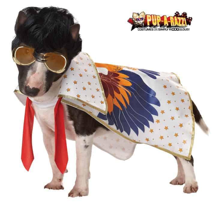 Rock n' Roll Dog Costume