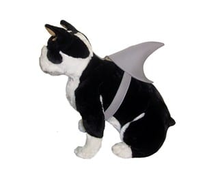 Shark Fin Dog Costume Shark Fin Dog Costume