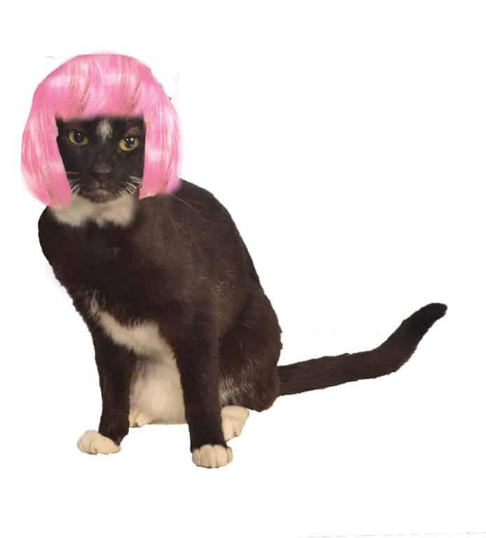 Short Pink Bob Wig