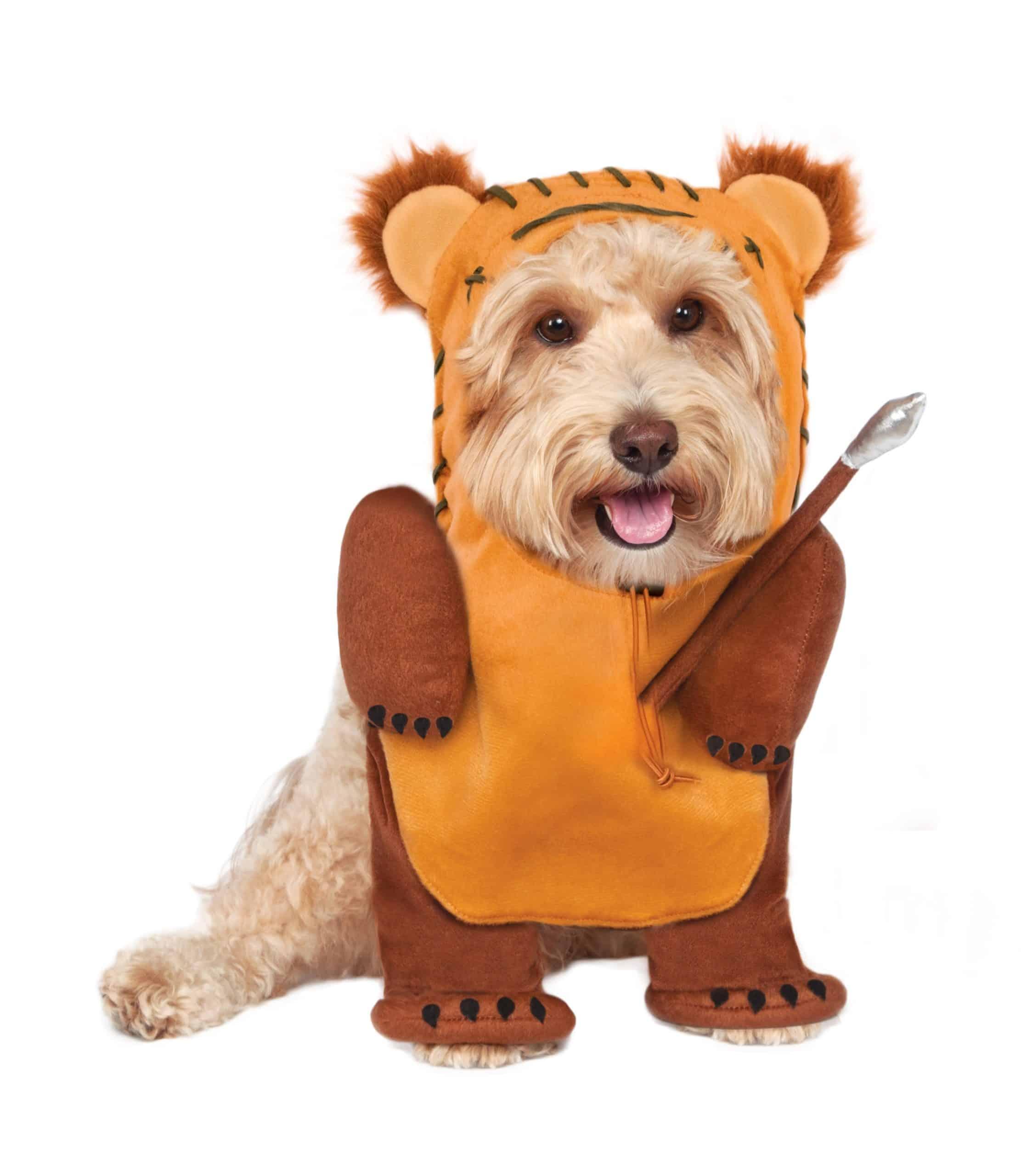 Star Wars Walking Ewok Dog Costume