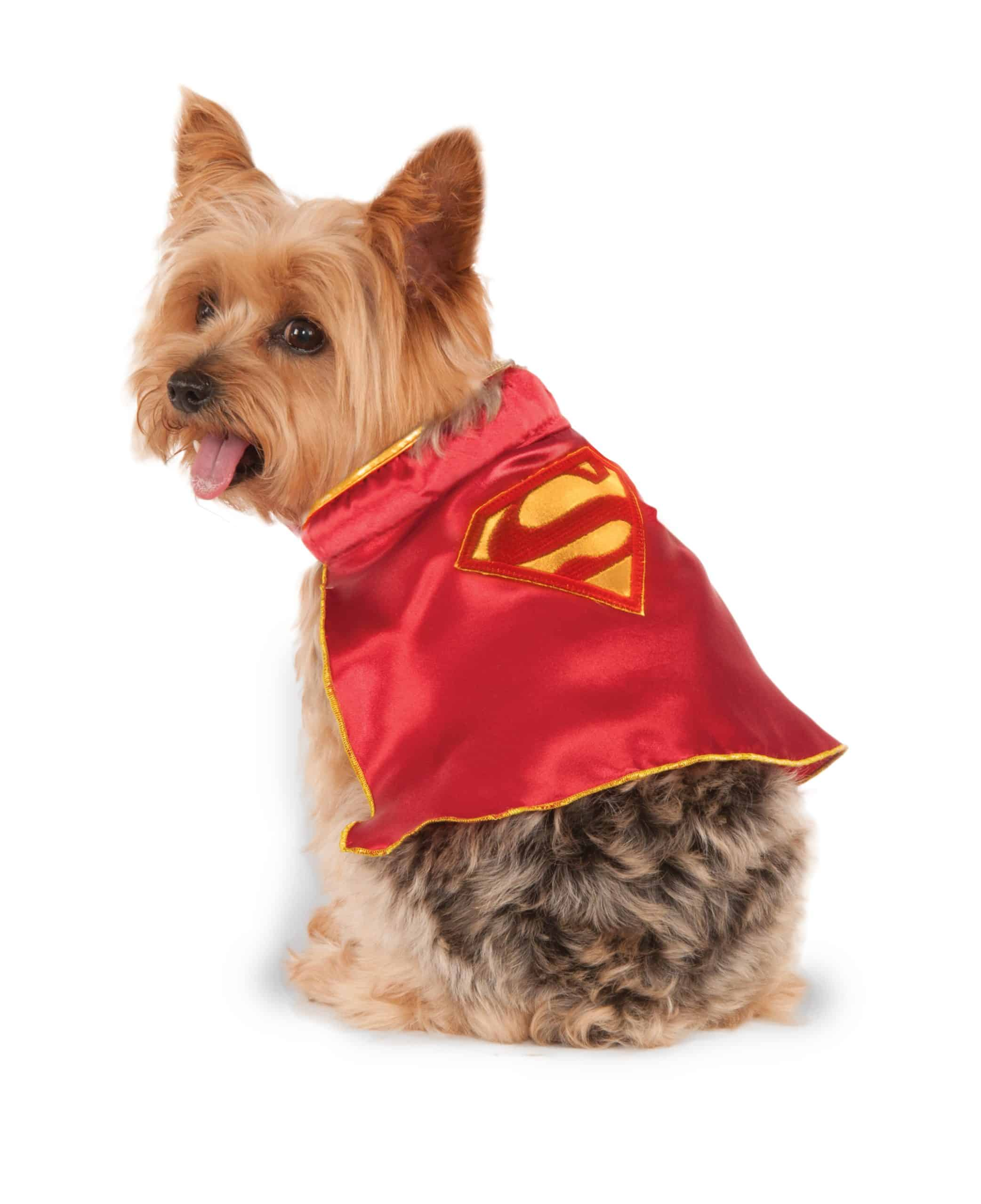 Supergirl Dog Cape