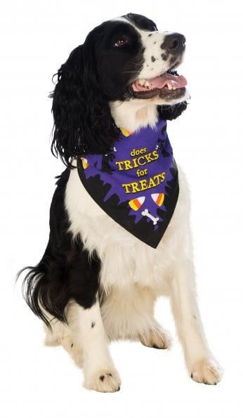 Trick or Treat Bandana