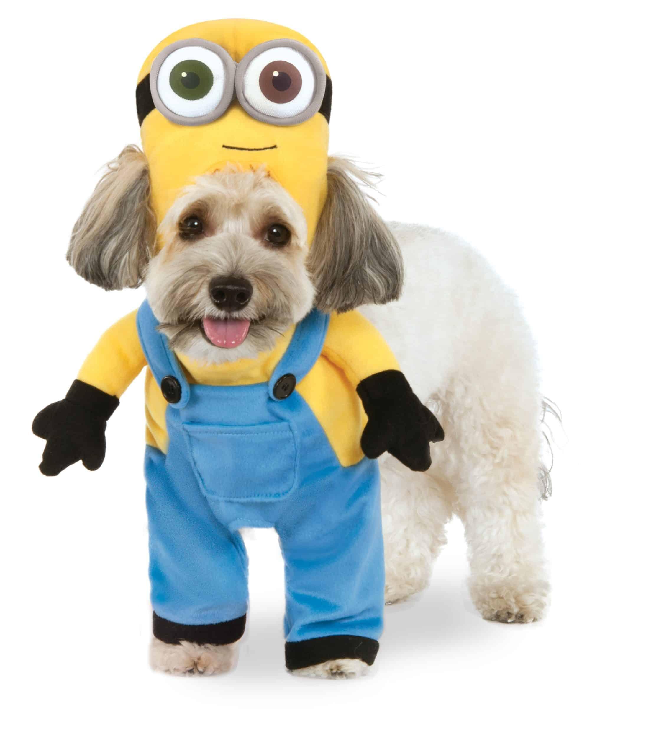 Walking Minion Stuart Dog Costume