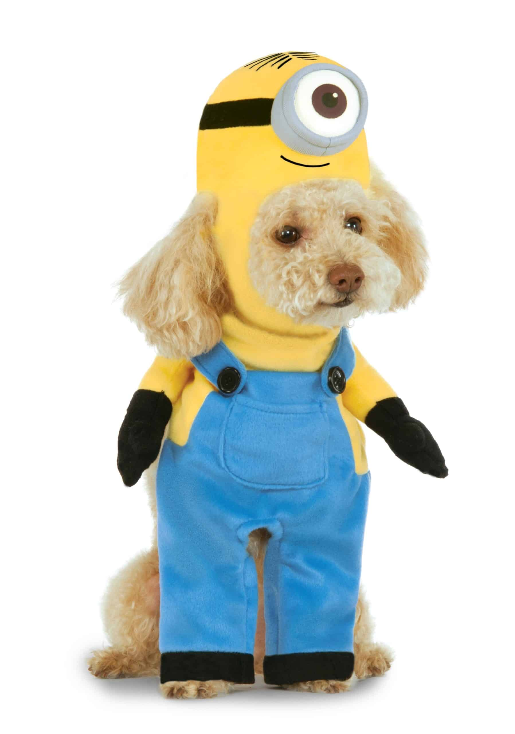 Walking Minion Stuart Dog Costume