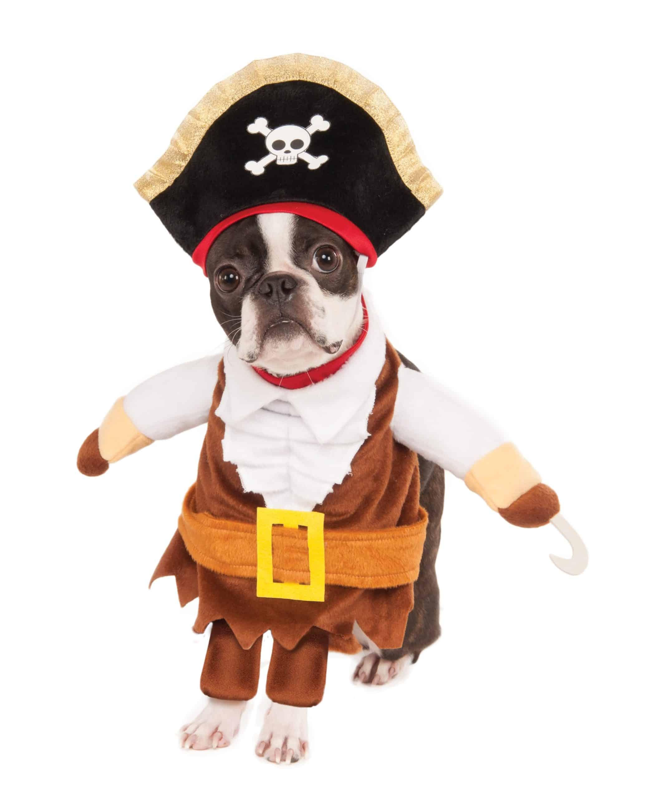 Walking Pirate Dog Costume