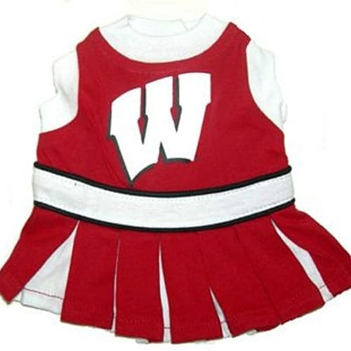 Wisconsin Cheerleader Dog Dress