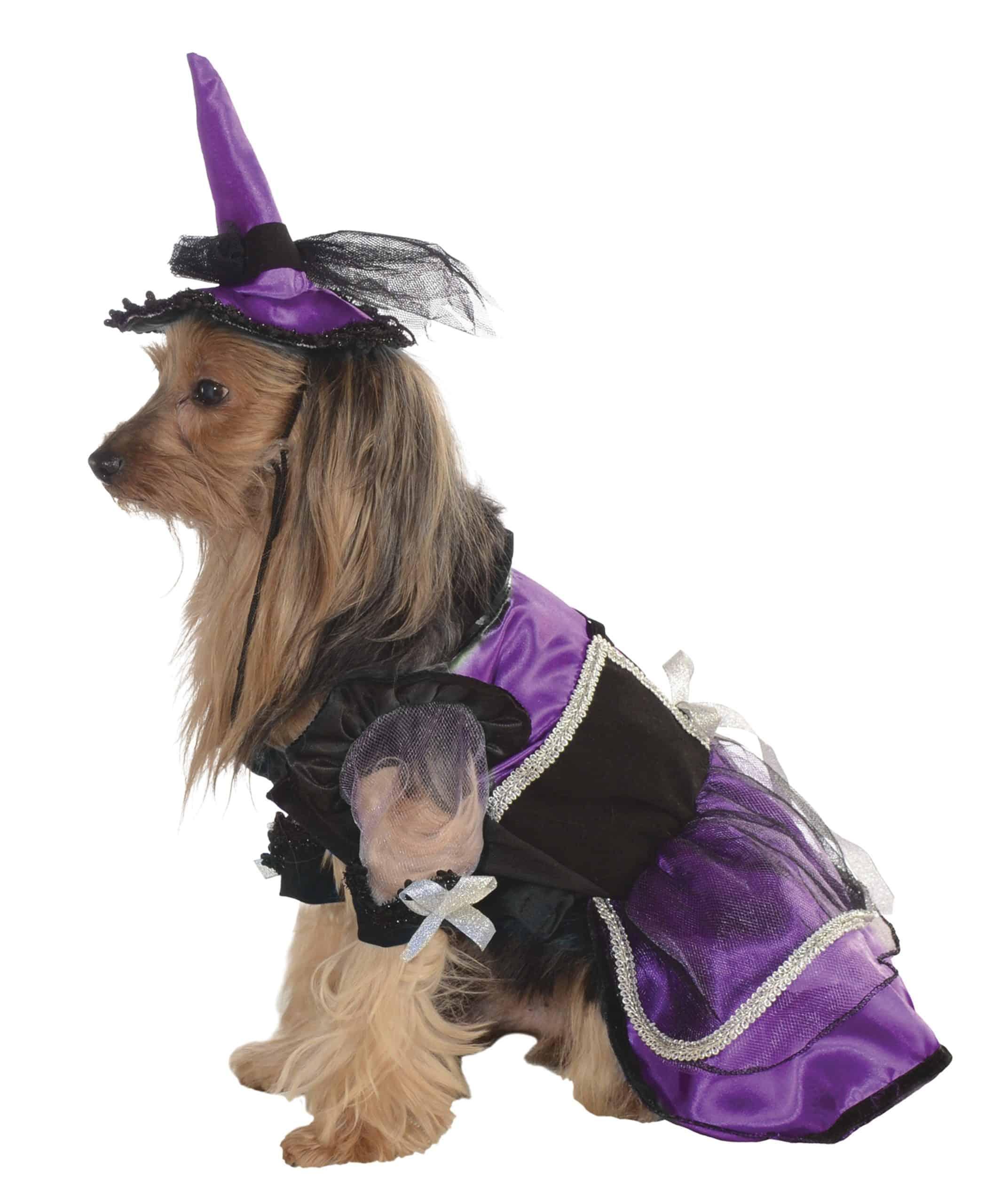 Witch Dog Costume - Purple