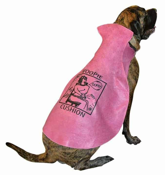 woopie cushion dog costume