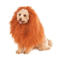 Animal Costumes for Dogs
