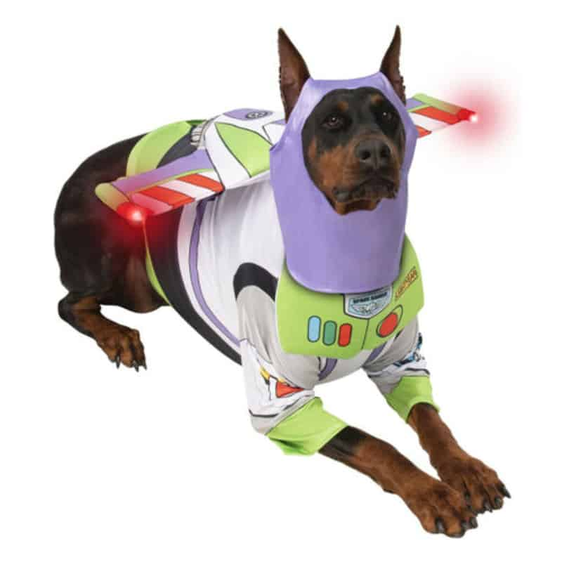 Big Dog Buzz Lightyear Costume
