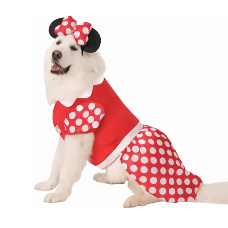 Big Dog Minnie Mouse Costume