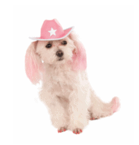 Pink Cowgirl Hat with Star Dog & Cat Apparel
