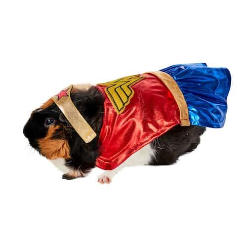 Wonder Woman Guinea Pig Pet Costume