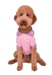 Pink Polo Shirt Dog & Cat Costume Accessory
